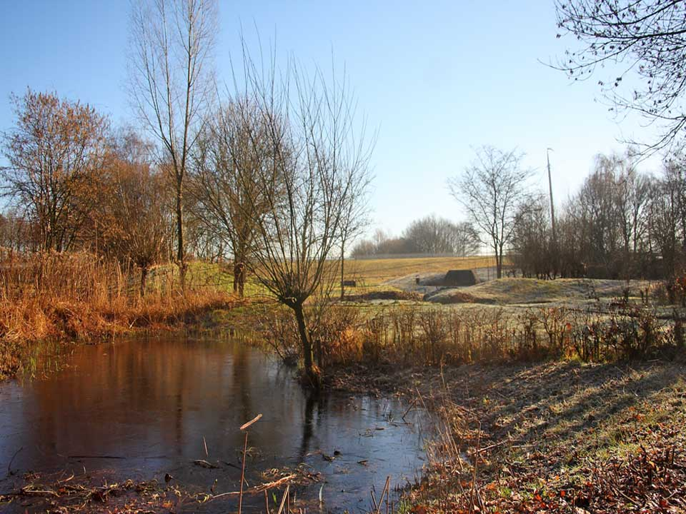 winterbeeld_natuurtuin_2018_Hortus_Harderwijk_natuur_milieu_educatie_CT