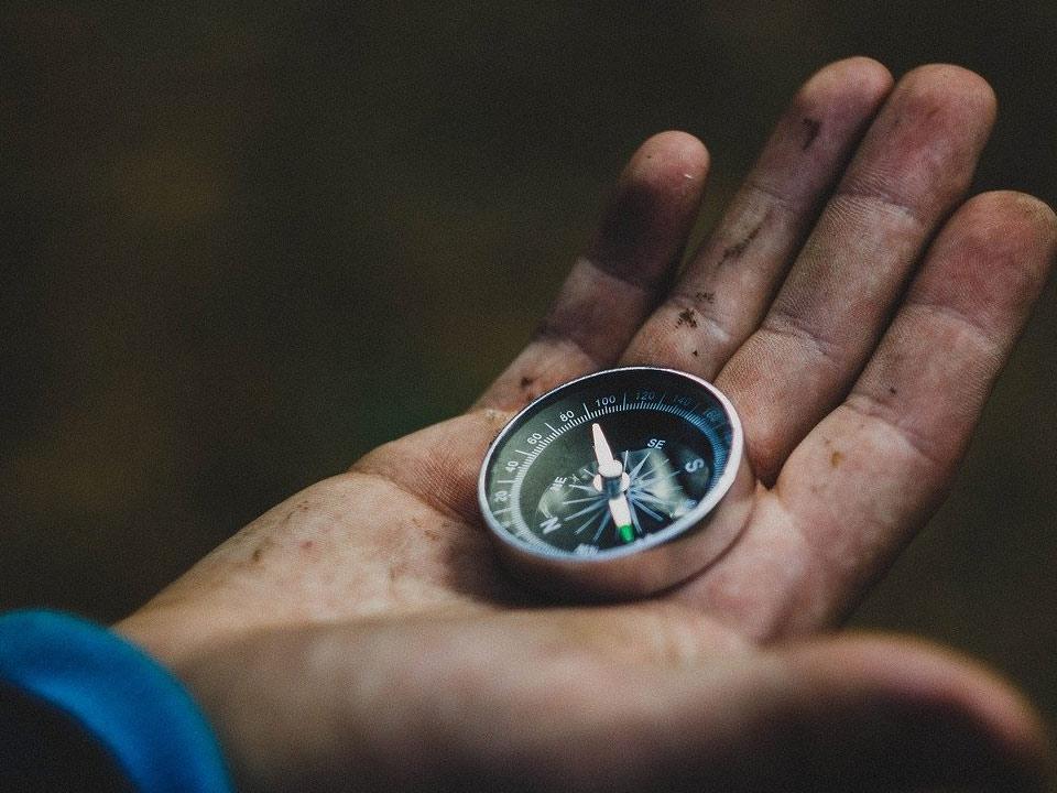 Kompas-bos-orientatie